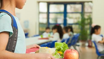 Model de menjador escolar